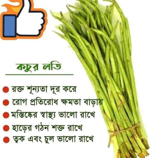 Kochur Loti Vegetable